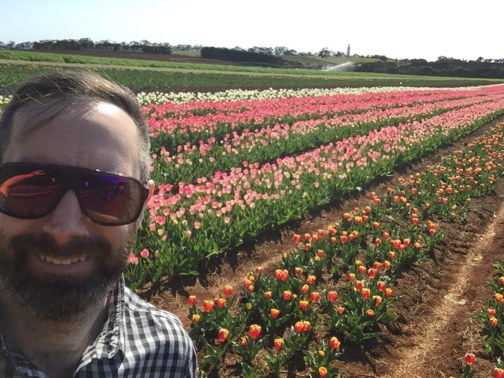 A man standing in a field of tulips